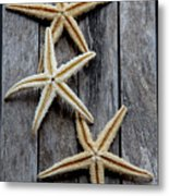Starfishes In Wooden Metal Print