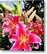 Stargazer Lilies #2 Metal Print