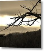 Stark And Alone Metal Print