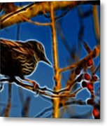 Starling In Winter Garb - Fractal Metal Print