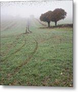 Starling Murtmuration In Foggy Misty Autumn Morning Landscape In Metal Print