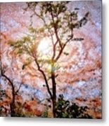 Starry Night Fantasy, Tree Silhouette Metal Print