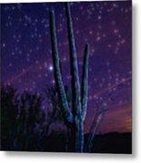Starry Starry Sonoran Skies  Metal Print