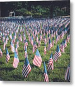 Stars And Stripes Metal Print by Claudia M Photography
