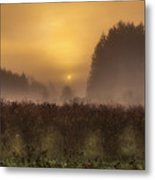 Start Of A New Day Metal Print by Blanca Braun