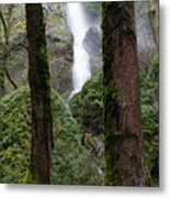 Starvation Creek Falls Between The Trees Metal Print