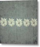 Steely Gray Rustic Flower Row Metal Print