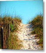 Steep Beach Path Metal Print