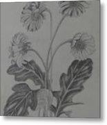 stems of gerbera from Rajbhavan Dehradun Metal Print