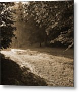 Step Out Of The Shadow Metal Print