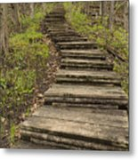Step Trail In Woods 17 A Metal Print