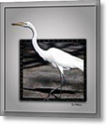 Stepping Out Into A New Dimension Metal Print