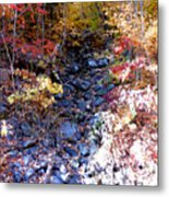 Stepping Stones At Autumn Forest Metal Print