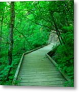 Steps Into Paradise Metal Print