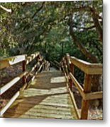Steps To Adventure Metal Print