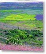 Steptoe Butte Metal Print