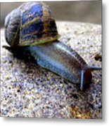 Stick Your Neck Out Metal Print