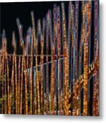 Sticks Metal Print