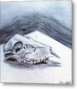 Still Life Drawing Cow Skull 02 Metal Print