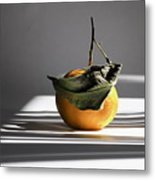 Still Life With Orange And Grid Lines. Metal Print