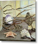 Still Life With Seashells And Pine Cones Metal Print