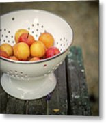 Still Life With Yellow Plums  Metal Print