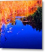 Still Water Beside The Forest 3 Ae32  Metal Print