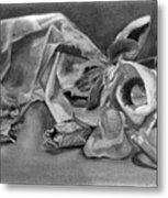 Stilllife Present Beauty Metal Print by Rebecca Tacosa Gray