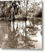 Stillness In The Glades Metal Print