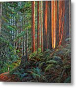 Stillwater Cove Canyon Trail Metal Print