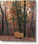 Stone Leaves And Trees Metal Print