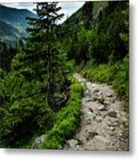 Stone Walkway Into The Valley Metal Print