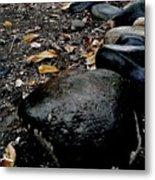 Stoned Trail Metal Print