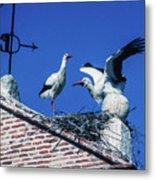 Storks Of Segovia Metal Print