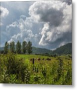 Storm And Cattle Metal Print