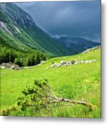 Storm Approaching Over Beautiful Green Field In Norway Metal Print