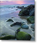 Storm Casualty Metal Print