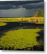 Storm Light At Patten Lake #2 Metal Print