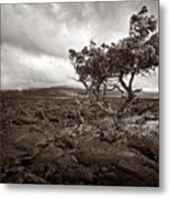 Storm Moving In - Sepia Metal Print