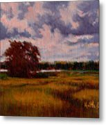 Storm Over Marshes Metal Print
