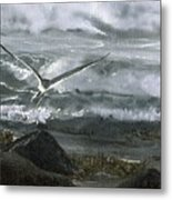 Stormy Flight 2  Metal Print by Charles Parks