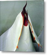 Straight To The Point Metal Print