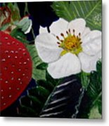 Strawberry And Blossom Metal Print