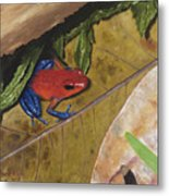 Strawberry Poison Dart Frog Metal Print