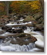 Stream At Ricketts Glen Metal Print by Robert Wirth