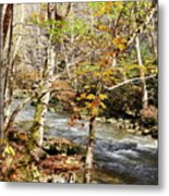 Stream In An Autumn Woods Metal Print