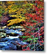 Stream In Autumn Metal Print