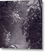 Stream Light B W Metal Print