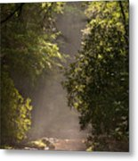 Stream Light Metal Print