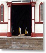 Street Dog At Church Metal Print